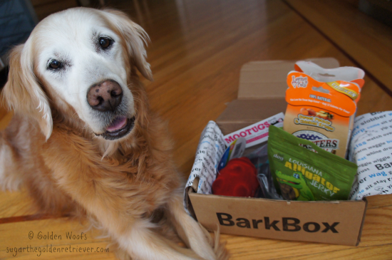 Sugar's BarkBox Goodies