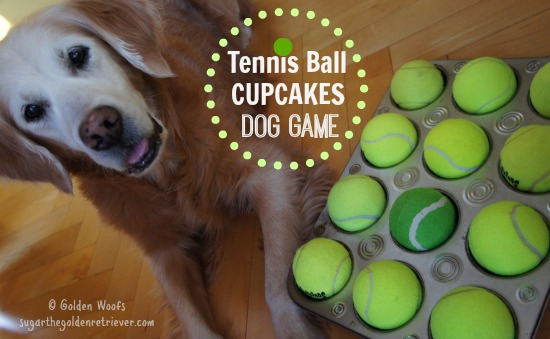 Tennis Ball Cupcakes Dog Game