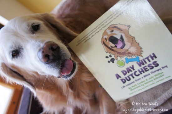A Day With Dutchess Life Lessons from a Blind Therapy Dog
