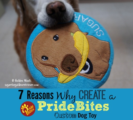 7 Reasons Why Create a PrideBites Custom Dog Toy