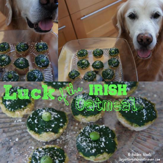 Luckofthe_IrishOatmeal