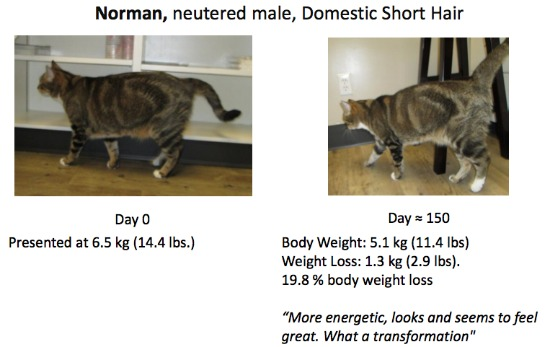 Norman Weight Loss Success w/ Hills Metabolic