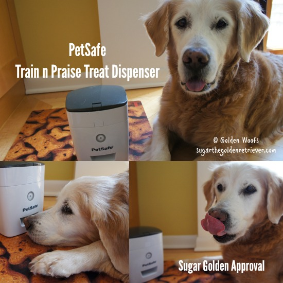 Sugar Approves PetSafe Train n Praise