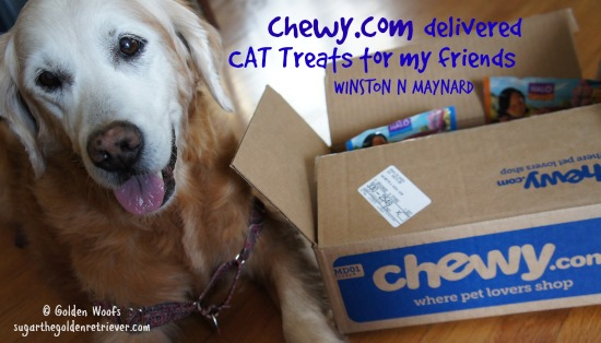 Chewy.com Delivered Cat Treats