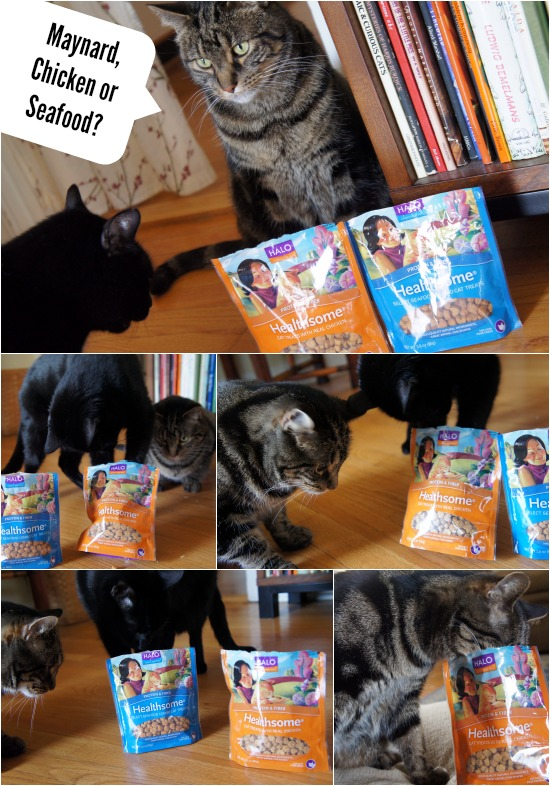 Halo Healthsome CAT Treats