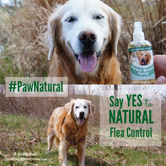 PawNatural Herbal Defense Spray