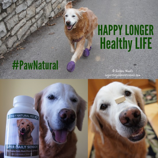 PawNatural Senior Canine Supplements