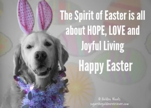 Happy Easter : HOPE LOVE JOY