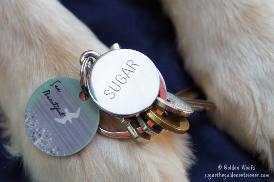 Silver Paw Personalized Engraved Tag/Keychain