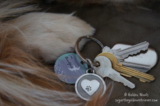 Silver Paw Pet Tags/Keychain Paw Heart