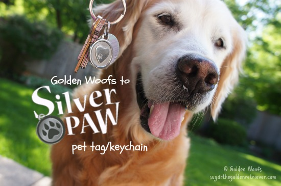 SilverPaw_PawHeartKeychain