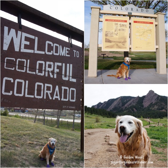 TravelWithYourDog_Colorado