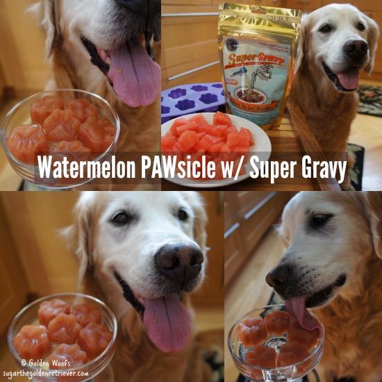 watermelonposiclefordogs_supergravy