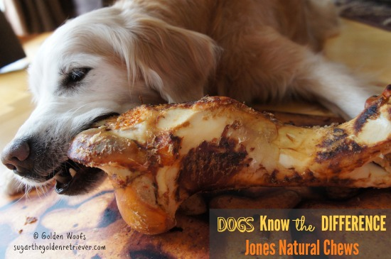 Dogs Know The Difference: Jones Chew