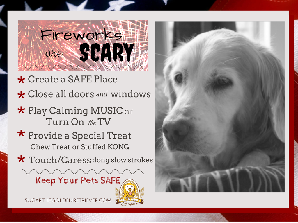 Fireworks are SCARY: Keep Your Pets SAFE Infographic