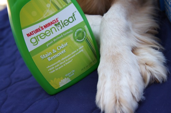 Nature's Miracle StainOdor JulyPetBox