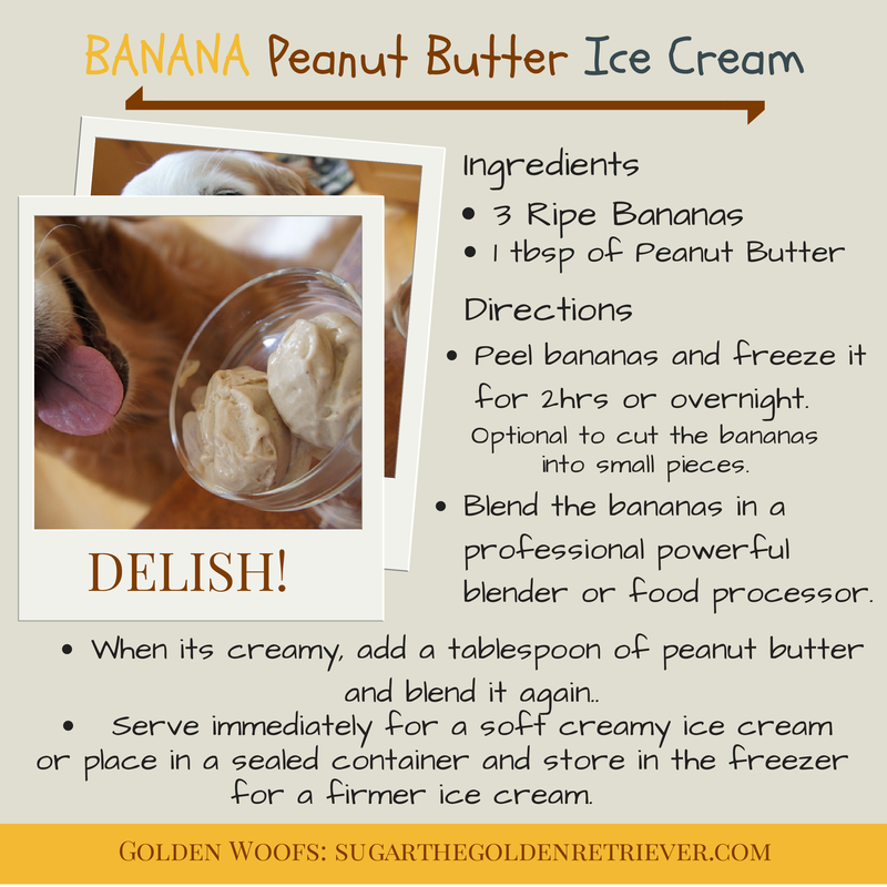 Dog Ice Cream Banana Peanut Butter