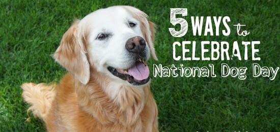 5 Ways To Celebrate National Dog Day