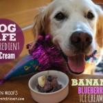 Dog Safe 2-Ingredient Ice Cream