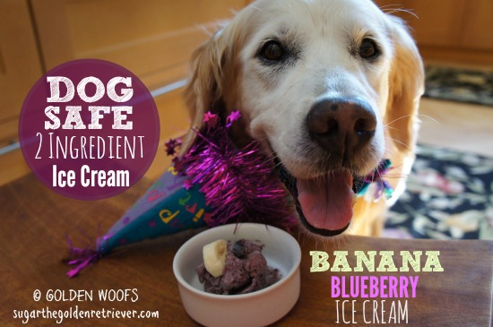 Dog Safe 2-Ingredient Ice Cream