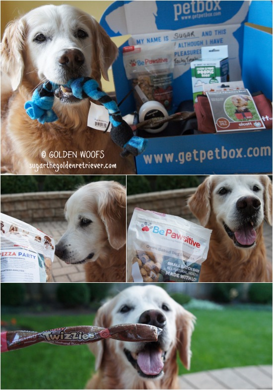 August PetBox Dog Treats