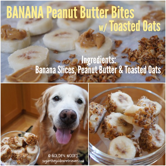 BANAN Peanut Butter Bites with Toasted Oats