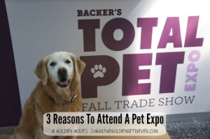 Reasons To Attend Pet Expo