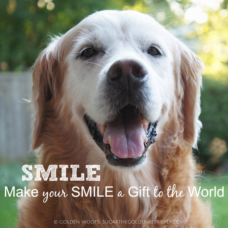 SMILE World Smile Day