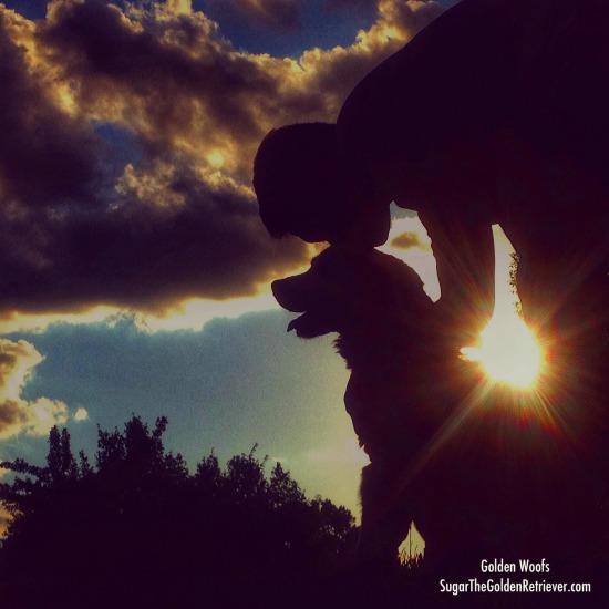 Silhouette Sunset w/ Golden Retriever