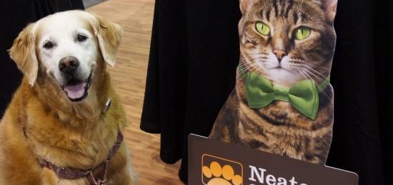 Cat Litter Neater Scooper