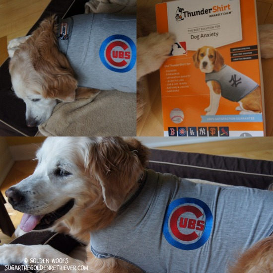 MLB ThunderShirt for Dog Anxiety Treatment