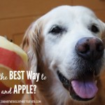 What's The Best Way To Peel An Apple