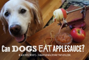 Dog Safe Applesauce