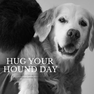 Hug Your Hound Day