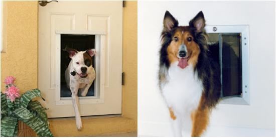 Pet Doors PlexiDor
