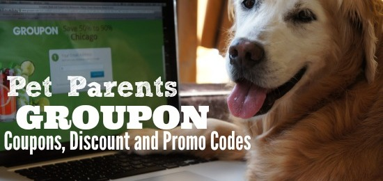 For Pet Parents: Groupon Coupons, Discount and Promo Codes
