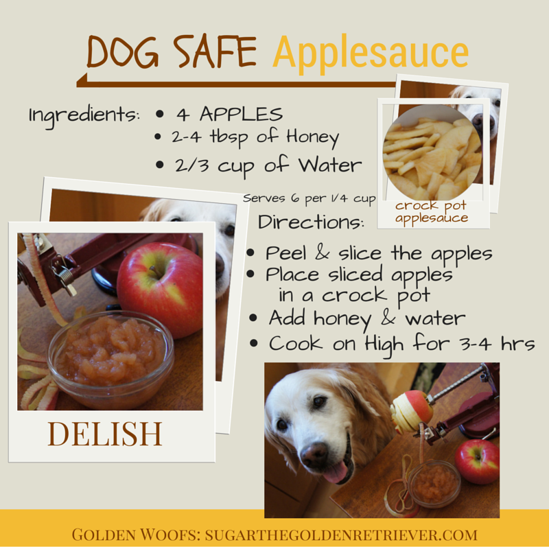 RECIPE Homemade Dog Safe Applesauce