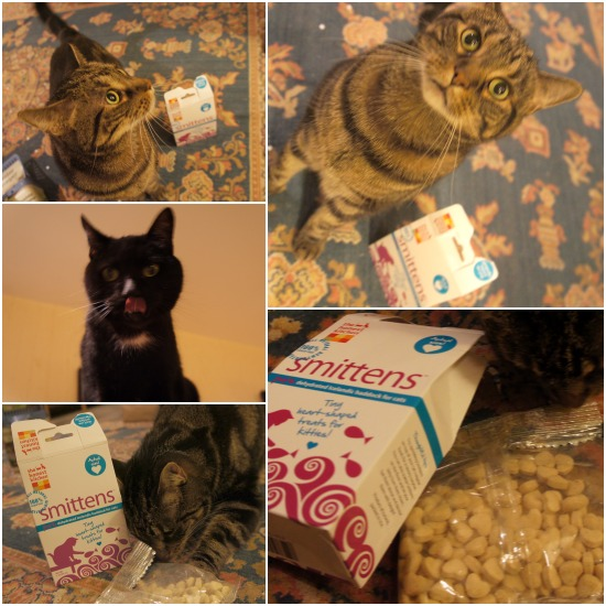 Smittens Cat Treats Review