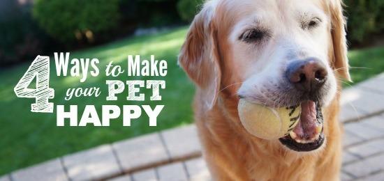 Healthy Pets, Happy Pets #GetHealthyHappy