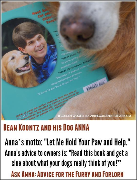 dean koontz books reviews in amazon