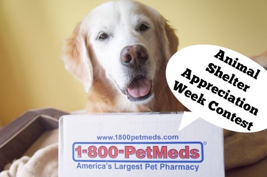 1-800-PetMeds Animal Shelter Appreciation Week Contest