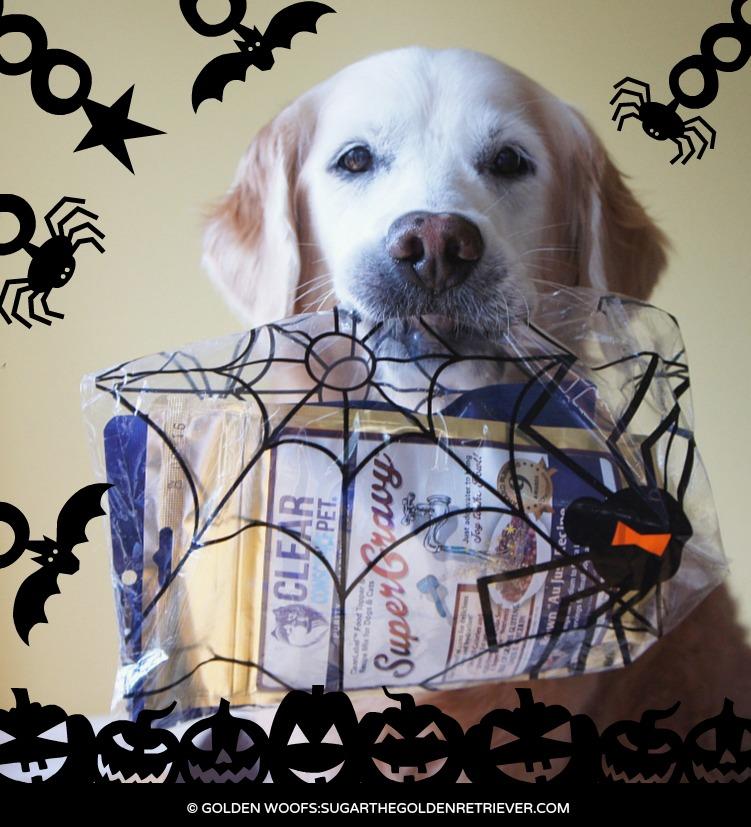 Sugar Clear Conscience Pet Halloween Treats