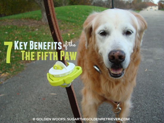 7 Benefits Fifth Paw: Dog Poop Bag Carrier