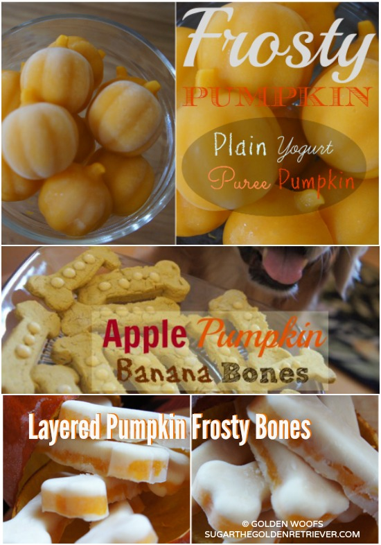 Pumpkin Puree for Dog Treats