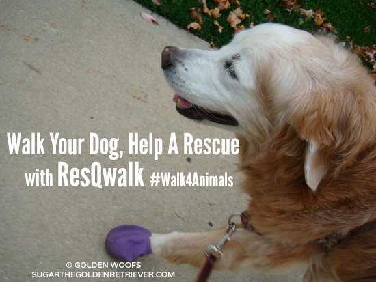 Walk Your Dog Help A Rescue ResQwalk