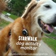 Dog Activity Monitor StarWalk