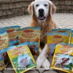 Holiday Dog Treats Giveaway from Zukes