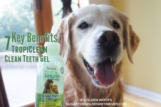 TropiClean 7 Benefits Clean Teeth Gel