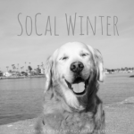 SoCal 1st Day of Winter