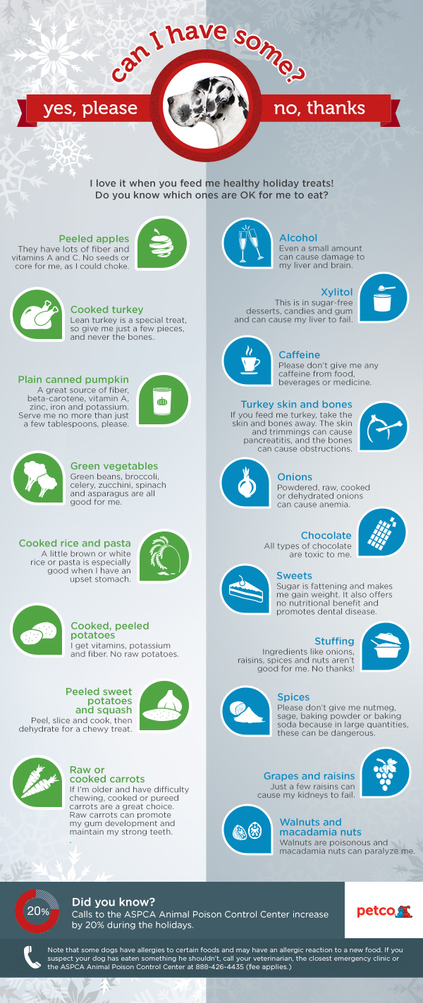 Holiday Pet Safety Tips Infographic Food